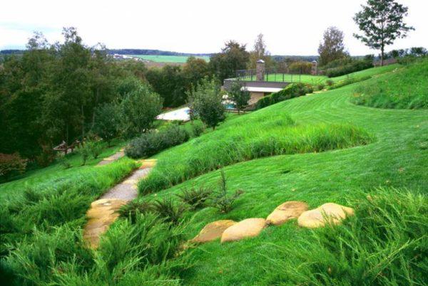 Зеленые насаждения для укрепления склона